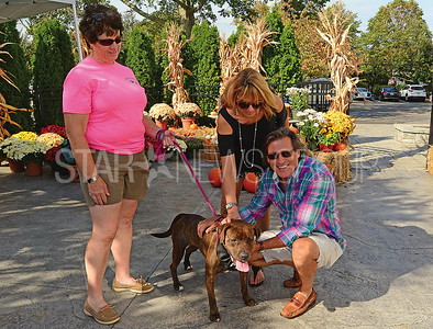 l-r: grainne levine with toni the dog (up for adoption), and janet and michael benson of toms river