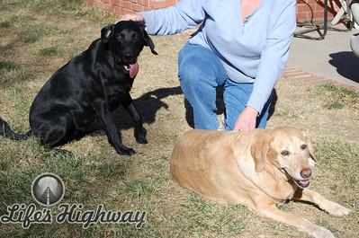 Lola and Molly