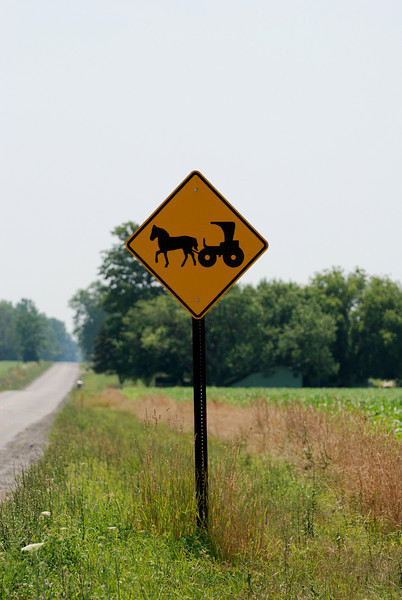 No kidding, you really need to be cautious on the backroads from Indiana throughout the northeast.  This sign was in New York on the western edge, close to Lake Ontario.  Lots and lots of farmland in New York.