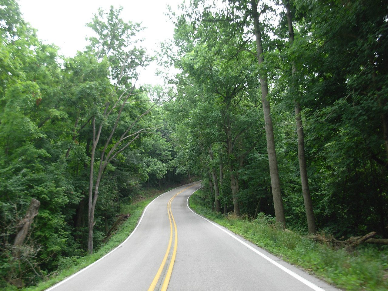 Great little road here . . . wherever we are.  Dale . . . ??