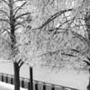 winter riverwalk