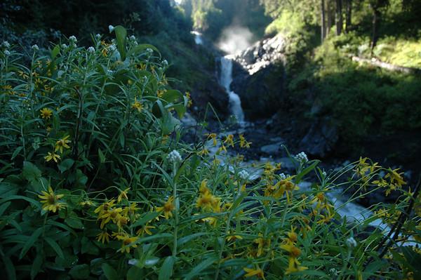 Small falls at Van Trump Creek.
