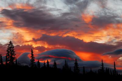 Mt Rainier (Paridise) 7/07