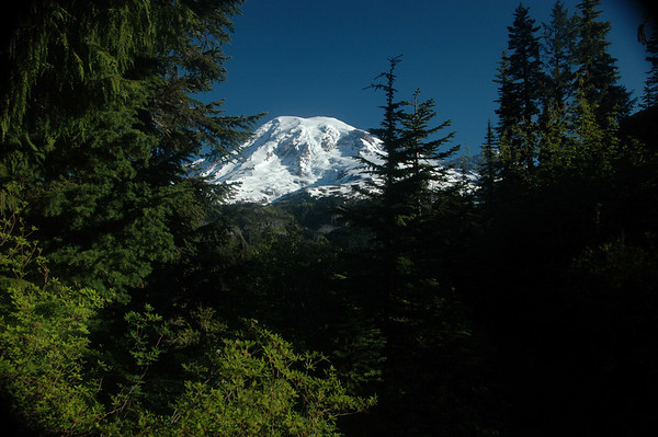 Mt. Rainier seen from the Snow Lake Trail.