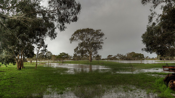 The Cygnet flooding5