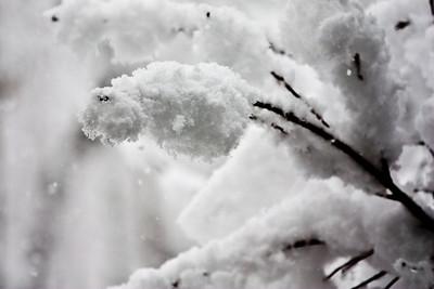 Farm Snow
