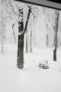Farm Snow Scenes