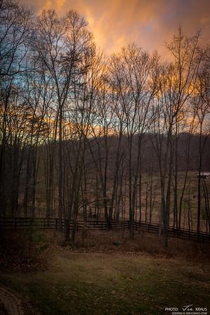 Farm Forest Sunset
