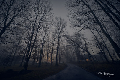 Night, Fog, Farm