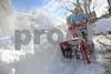 Blizzard 2016 SnowstormMF020
