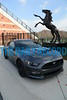 11-20-14 BALTIMORE, MD- The MPT MotorWeek film crew was at Stevenson University yesterday, capturing some footage with a 2015 Ford Mustang GT and the recently installed 'Victory' Mustang, sculpted by wildlife sculptor Bart Walter, for an upcoming track test episode that should run sometime in January. (The Daily Record/Maximilian Franz)