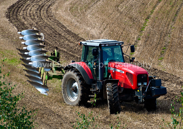 Simon Newby driving his M/F 8280 & Dowdswell 5 furrow plough taken at Walshford nr. Wetherby.