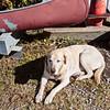 Lucy - Deepwater, November 19, 2014.