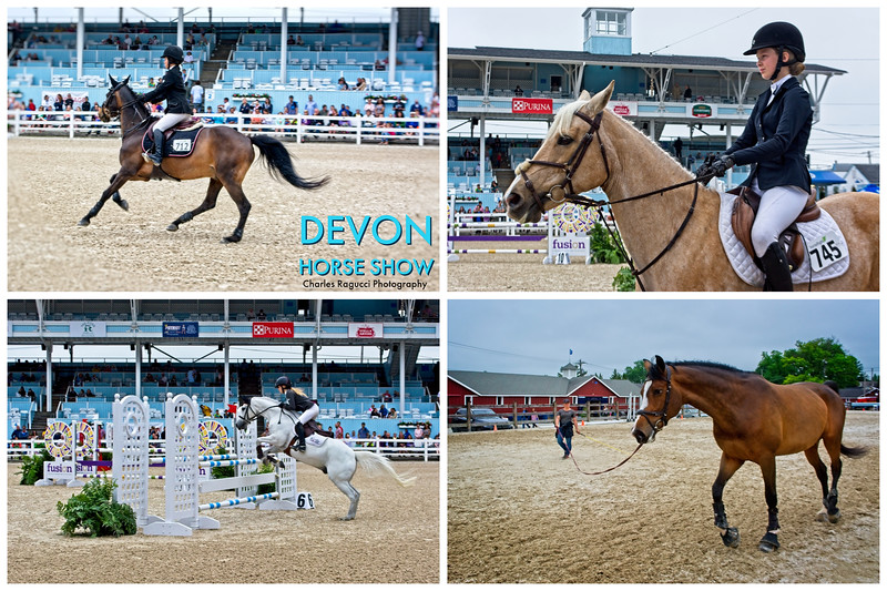 The Devon Horse Show and Country Fair