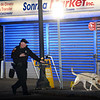 """CARL RUSSO/Staff photo. Methuen K-9 officer, Tim Getchell and his canine, Buddy search the area for evidence.  <br /> <br /> An """"unknown assailant"""" shot a 24-year-old man while he was walking on Broadway Tuesday evening, police said. The victim was shot at several times and hit once, according to Detective Lt. Michael Pappalardo, who was at the scene investigating. The Fire Department transported the man to a local hospital for treatment of a non-life-threatening injury, Pappalardo said.The shooting happened at Broadway and Center Street at around 7:25 p.m. Multiple 911 calls reported the incident to police. Two hours after the shooting, the section of Broadway in front of the Sonrisa Market was blocked by crime scene tape. Part of Center Street was also closed as state and Methuen police officers investigated. Police """"recovered items of an evidentiary nature"""" at the scene, said Pappalardo, who didn't go into further details. No arrests had been made as of Tuesday night. Anyone with information about the shooting is asked to call Methuen police at 978-983-8698. The Massachusetts State Police Crime Scene Services Section assisted Methuen detectives with the investigation. 12/24/2019"""