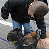 RYAN HUTTON/ Staff photo<br /> Aiden Moore, 8, pets the belly of Lawrence Police K-9 Magnus outside the Derry Police Department on Friday morning. Nearly a dozen police dogs and their handlers showed up to help present Aiden's family with a handicap accessible van which they will need as his Duchenne Muscular Dystrophy worsens.