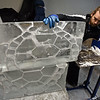 RYAN HUTTON/ Staff photo<br /> Lars-Erik Miller sets two parts of a sea turtle ice sculpture together in the Brilliant Ice Sculpture shop in Lawrence on Thursday.