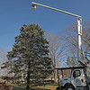MIKE SPRINGER/Staff photo<br /> A cherry-picker is moved into place Monday as a worker with Turner Tree Service puts lights on the 40-foot spruce tree near the 9/11 Memorial in Salem, New Hampshire.<br /> 11/25/2019