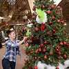 """TIM JEAN/Staff photo <br /> <br /> Robin from the Irish Cottage Restaurant and Pub, in Methuen, adds decorations to her company's tree """" The Cottage Grinch"""" as she helps sets up for the annual Festival of Trees in Methuen.         11/15/19"""