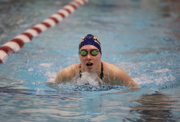 MIKE SPRINGER/Staff photo<br /> Polina Malinovskaya of Andover competes Sunday in the 100-yard Breaststroke in the state Division 1 finals at the MIT pool in Cambridge.<br /> 11/17/2019
