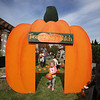 "MIKE SPRINGER/Staff photo<br /> Two-year-old Kaylee Potvin of Pelham carries the pumpkin she selected from the ""Tuscan Pumpkin Patch"" during the annual Toscana Fest on Sunday at the Tuscan Kitchen and Market in Salem, New Hampshire. The event included food, games and exhibits, with proceeds going to Lazarus House Ministries.<br /> 10/13/2019"
