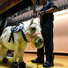 RYAN HUTTON/ Staff photo<br /> Peaches the mini horse stands on stage at High Plain Elementary School during an anti-bullying assembly on Friday with Andover Police Sgt. Steven Gerroir.
