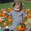 MIKE SPRINGER/Staff photo<br /> Two-year-old Nora  Johnson of Pelham  concentrates on the task at hand as her mother, Daniela, hands her a brush during the pumpkin-painting event Sunday at the annual Toscana Fest at the Tuscan Kitchen and Market in Salem, New Hampshire. The event included food, games and exhibits, with proceeds going to Lazarus House Ministries.<br /> 10/13/2019