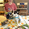 """TIM JEAN/Staff photo<br /> <br /> Anna Strazzulla, of Byfield, and her dog Trout, where signing copies of his book """"The River"""" Trout's Adventure Series a story by Trout, inside of Quinn's Canine Cafe during the first annual Art Walk throughout downtown Haverhill.   9/14/19"""