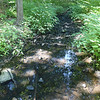 TIM JEAN/Staff photo<br /> <br /> The Middleton Brook seen along the Target Common Landmark Trail. The trail is organized around historic and natural features around the towns common.  7/21/20