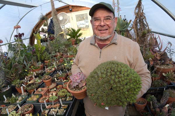 TIM JEAN/Staff photo <br /> <br /> Art Scarpa, of Atkinson, has the largest collection of succulents in New England.   2/19/20