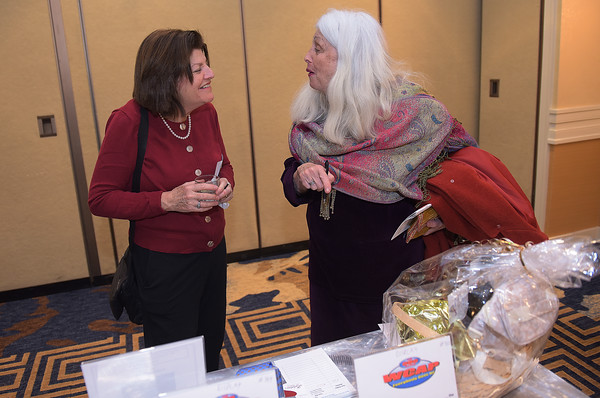 TIM JEAN/Staff photo <br /> <br /> Caren Jacobson, left, of North Andover, and Judith Chaloff, of North Reading, chat before making a bid on the auction items during Congregation Beth Israel of Andover's annual Evening of Sweet Indulgence. The event featured some of the best desserts and appetizers from the Merrimack Valley's premiere restaurants and caterers. The was also live entertainment, raffles, and auction items. It was held in the in the Grand Ballroom at the DoubleTree by Hilton in Andover.       2/1/20