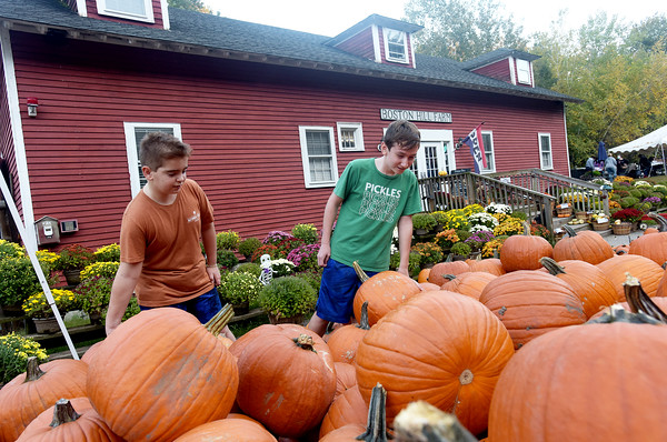 Gareth Kipp, left, and Connor Tower, both 11, from North Andover, look for the perfect pumpkin at Boston Hill Farm in North Andover. The farm and stand features pick your own apples, pumpkins, as well as fall treats such as apple cider donuts and a full bakery, and even has an ice cream parlor.  10/12/21