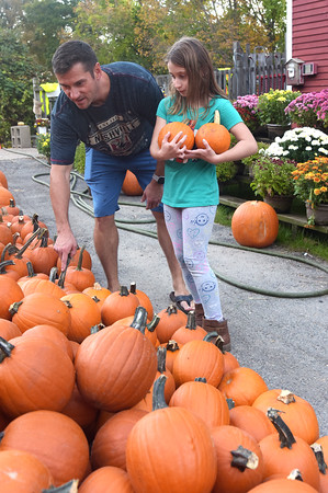 George Tower, of North Andover, and his daughter Olivia, 8, pick through the smaller pumpkins at Boston Hill Farm in North Andover. The farm and stand features pick your own apples, pumpkins, as well as fall treats such as apple cider donuts and a full bakery, and even has an ice cream parlor.  10/12/21