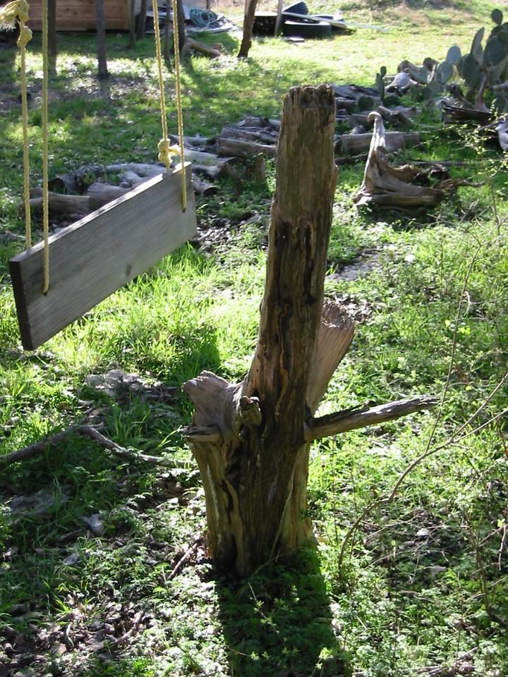 09-TreeSwing