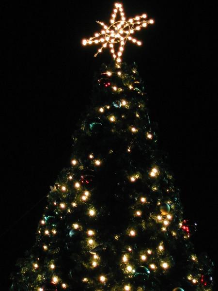 12-ChristmasTree