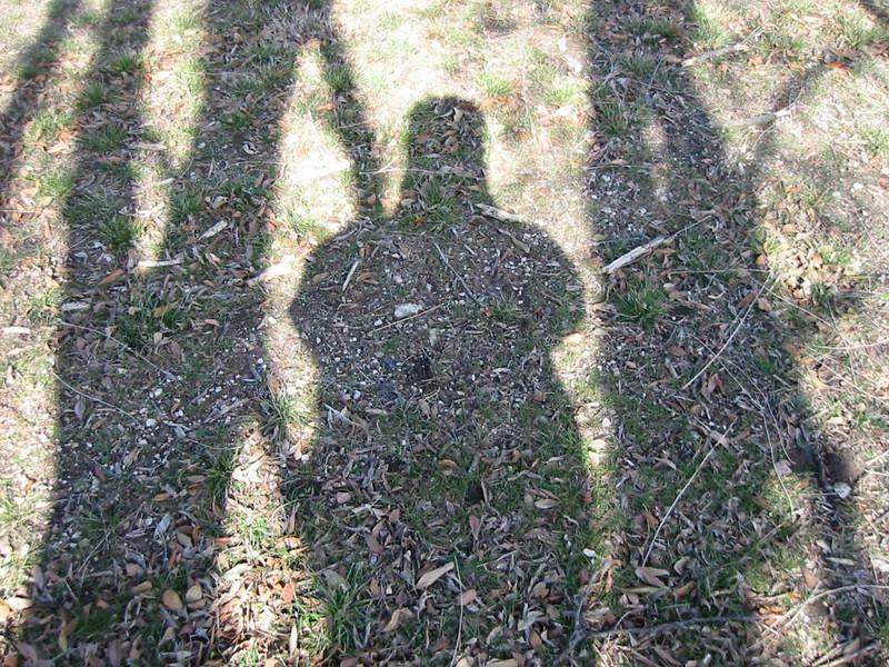 20-Shadows