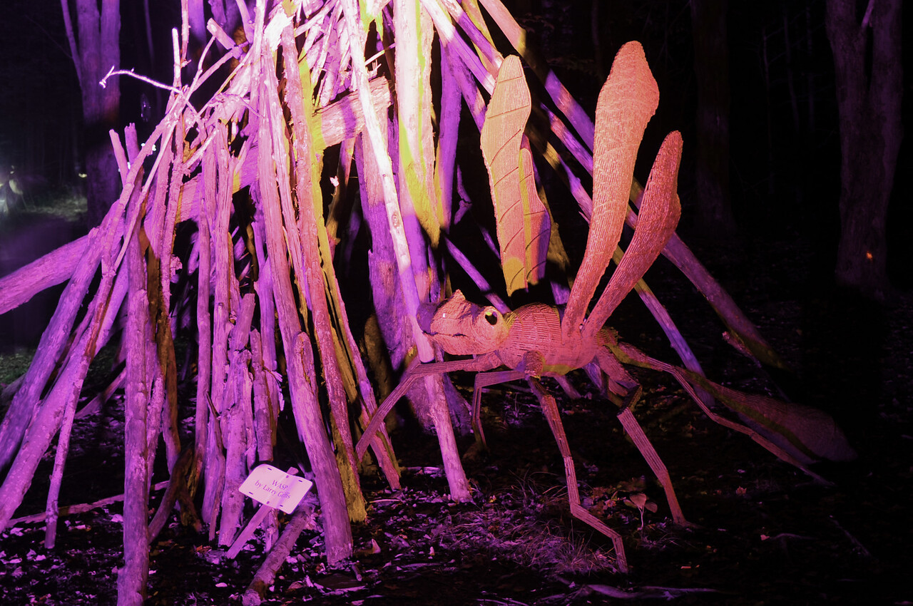"Griffis Sculpture Park Ashford Hollow NY  ""Night Lights Exhibit"""