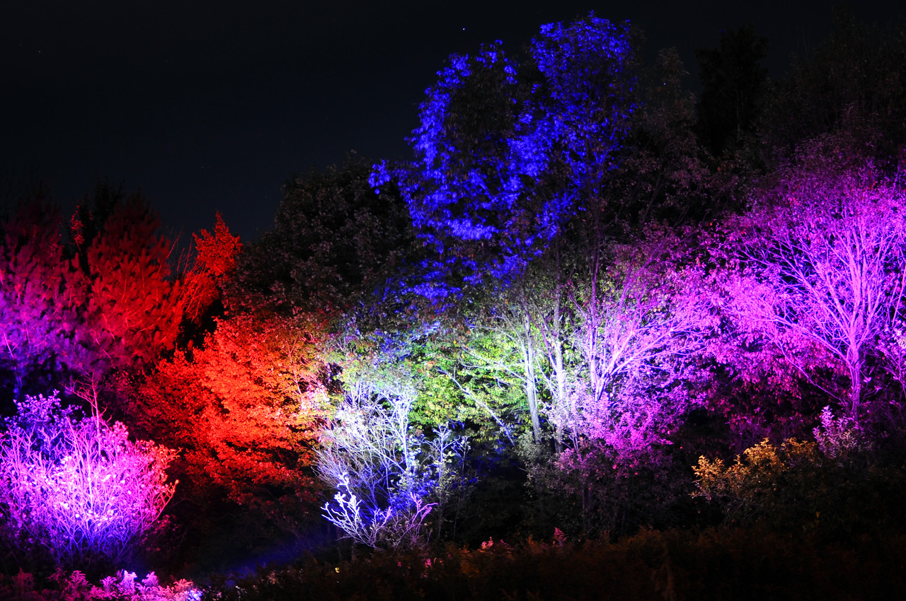 "Griffis Sculpture Park Ashford Hollow NY  ""Night Lights Exhibit"""