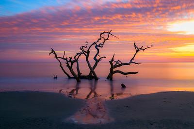 The Last Sunrise