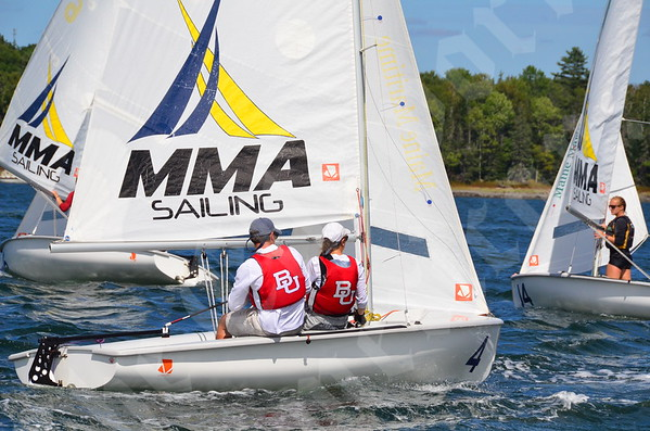 Harman and Penbay regattas