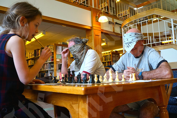 Ellsworth Chess Club 5/22/2015