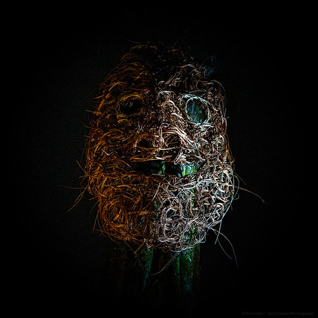 Fright Mask