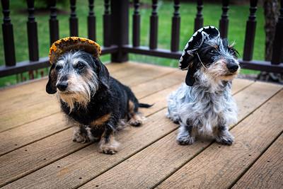 Two Amigos