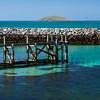 LDE_09 Eriskay Pier