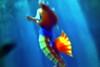 SeaLife Aquarium- At The Eye in Orlando2