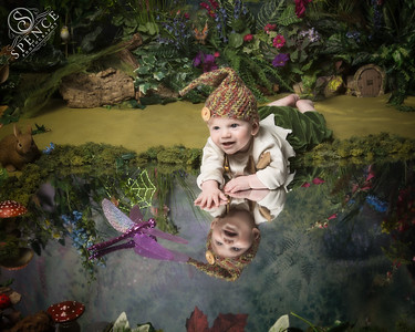 Dexter - The Fairy Experience @ Spence Photography