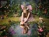 Eva - The Fairy Experience @ Spence Photography