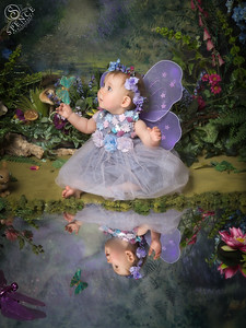 Cheye - The Fairy Experience @ Spence Photography