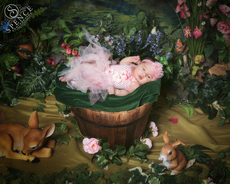 Bella - The Fairy Experience @ Spence Photography