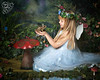 Tamzin - The Fairy Experience @ Spence Photography